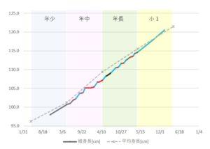 身長記録(一例)