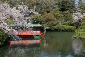 神泉苑,桜