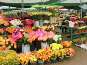 花屋,花市場