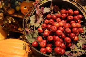 ハロウィン,りんご
