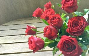 赤いバラ,恋愛